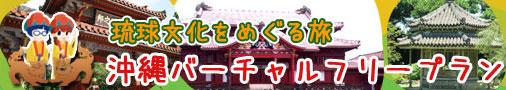 沖縄バーチャルフリープラン